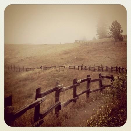 Redwood Regional